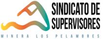 Sindicato de Supervisores Mina Los Pelambres